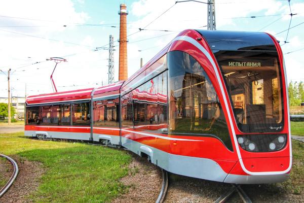 В Петербурге презентуют новые трамваи «Витязь-М». город, транспорт, трамвай