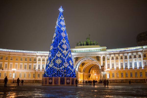 На Дворцовой площади устанавливают новогоднюю елку. 14339.jpeg