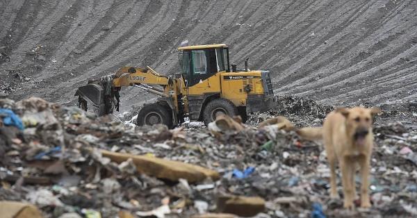 Власти Подмосковья хотят изъять мусорный полигон