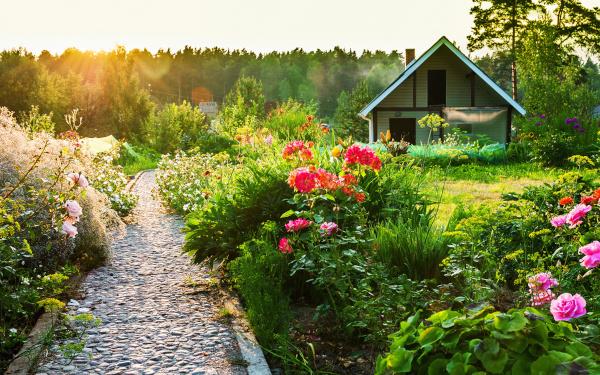 Путин подписал закон о льготах для садоводов и огородников. садоводство, огородничество, закон, налог, индивидуальное хозяйство, Владимир Путин
