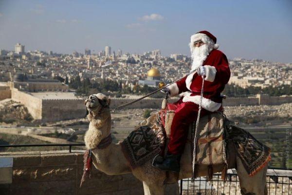 В Израиле открылись Дома Санта-Клауса: где увидеть, когда посетить. 14361.jpeg