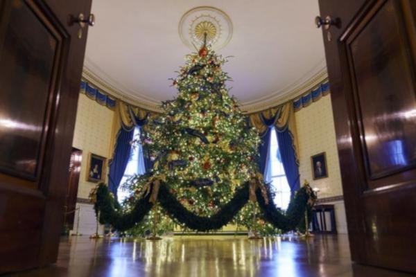 В Белом доме уже подготовились к Рождеству. 14371.jpeg