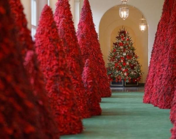 В Белом доме уже подготовились к Рождеству. 14372.jpeg