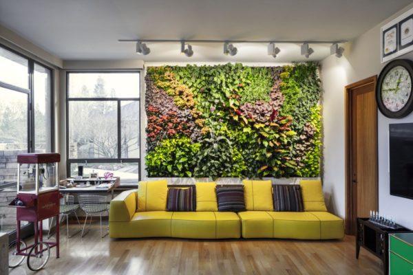Озеленение квартиры: основные особенности и типы. 15459.jpeg