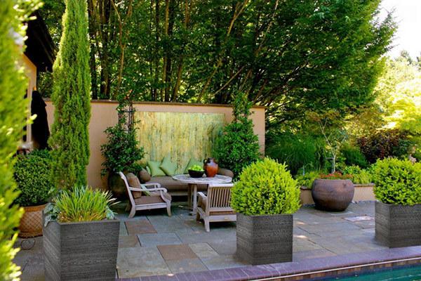Растения для внутреннего дворика. 16523.jpeg