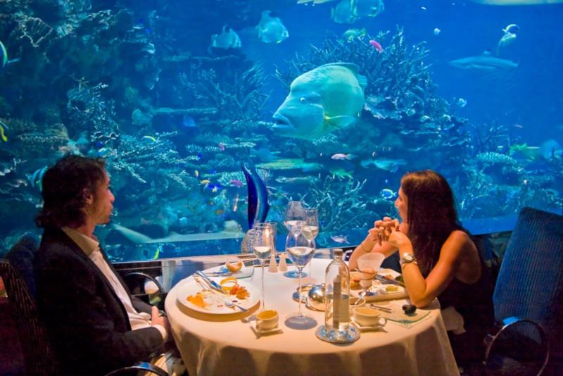 На юге Норвегии открылся крупнейший в мире ресторан под водой. 15530.jpeg
