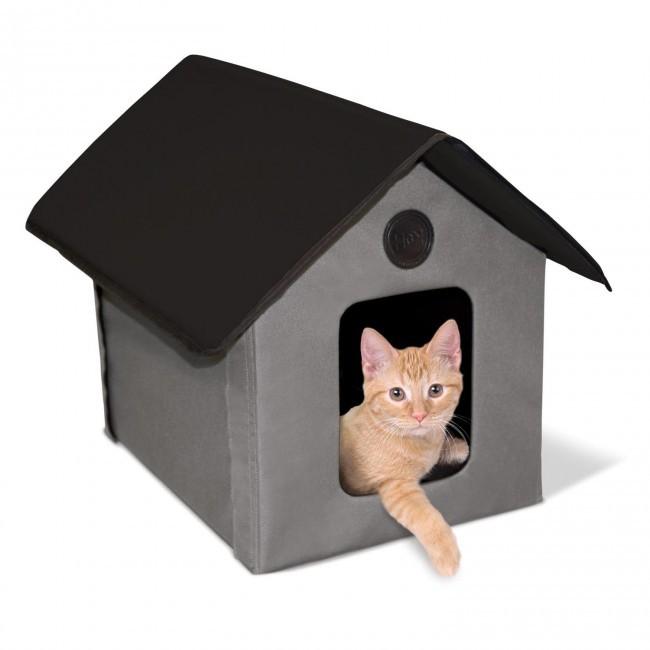 В доме появился котёнок. 13577.jpeg