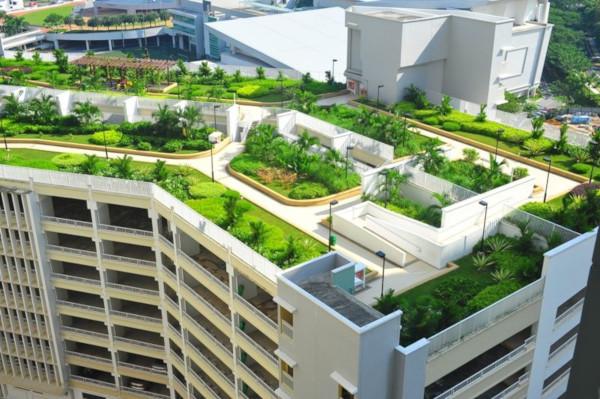В этом году  в России введут ГОСТ по озеленению крыш. 14638.jpeg