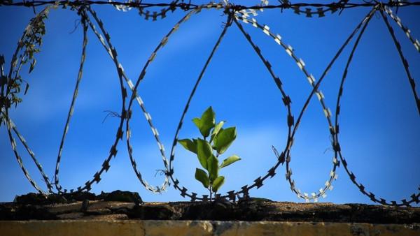 В Камбодже построят тюрьму повышенной комфортности. тюрьма, Камбоджа