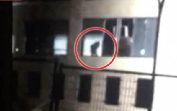 В окне заброшенного госпиталя засняли жуткое существо. 14691.jpeg