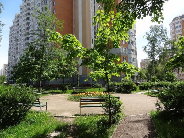 Питерских застройщиков обязали закладывать зеленые зоны вместе с жильем. дом, квартира, недвижимость, застройщик, зеленые зоны, Петербург