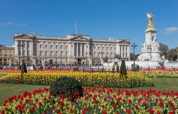 Букингемский дворец предложили превратить в коливинг. 14789.jpeg