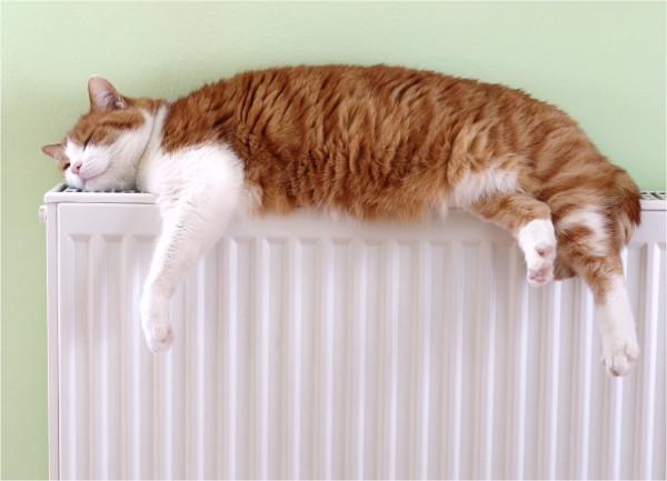 Жильцам изменят порядок расчета платы за отопление — Минстрой. 14828.jpeg