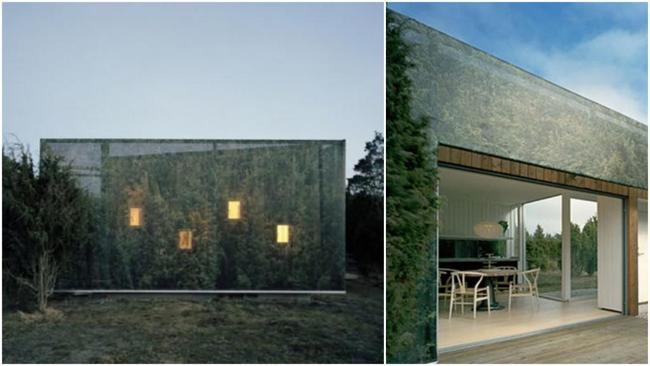 Удивительные дома-невидимки: зеркальные стены и другие способы, скрывающие эти строения от посторонних глаз. 17829.jpeg
