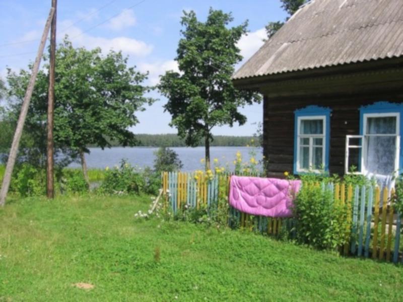 Материнский капитал в Петербурге разрешили вкладывать в строительство садовых домов. 15874.jpeg