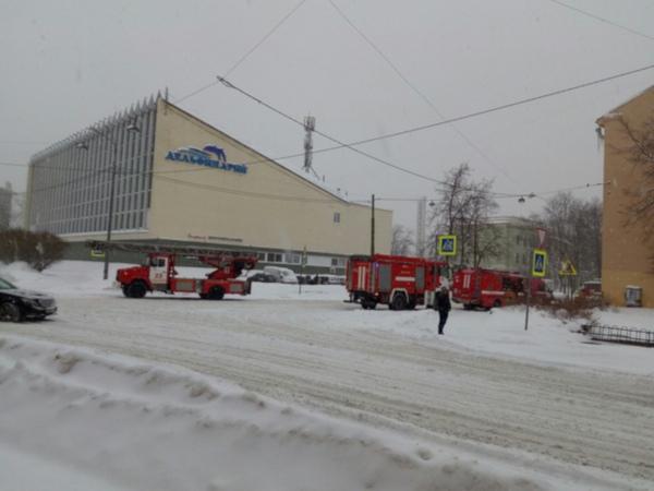 100 человек эвакуировали из-за пожара в дельфинарии на Крестовском острове в Петербурге. 14982.jpeg