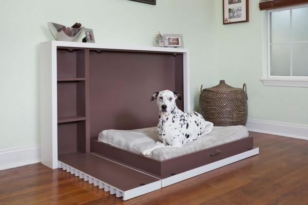 Собаководам на заметку: как оборудовать дом, в котором живет питомец?. 15990.jpeg