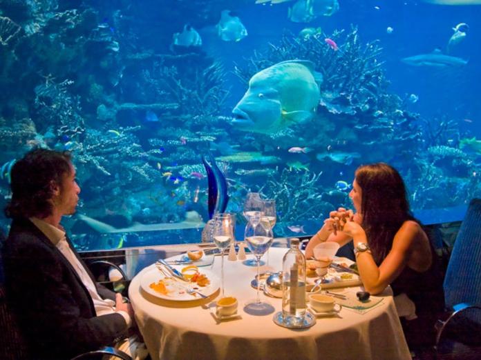 александровича подводный ресторан в москве фото вовсе придают значения