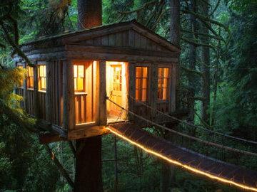 """В Англии в графстве Глостершир разрешили построить """"Дом на дереве"""""""