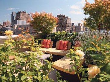 Пять тенденций в области озеленения жилища