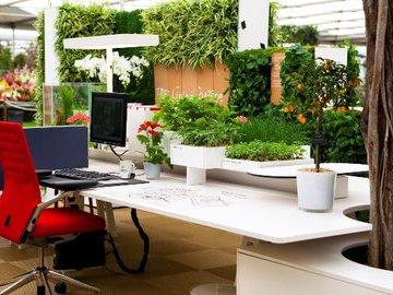 Дизайнерские решения, помогающие создать летнюю атмосферу (часть 2)