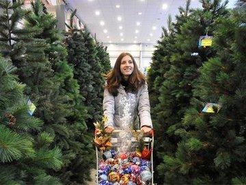Как выбрать елку к празднику
