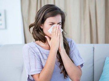 Что такое домашняя пыль и кто в ней обитает?