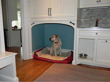 Дизайн-идеи: если в доме есть собака