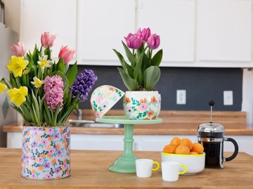 Цветы в вашем доме - средство от семейных ссор и Альцгеймера