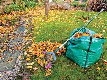 Топ-8 советов по подготовке вашего сада к зиме