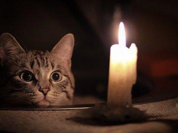 Если в квартире погас свет. Без паники!