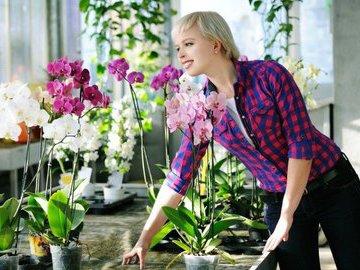 """Что комнатные растения могут """"рассказать"""" о темпераменте человека"""