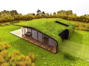 Экологический проект дома